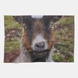 Goat close up. hand towel