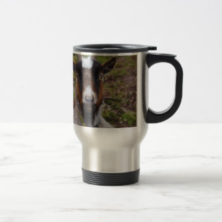 Goat close up. travel mug