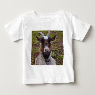 Goat close up. shirts