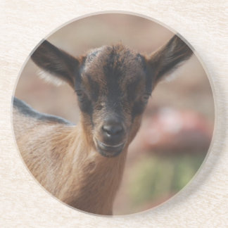 Goat Drink Coasters