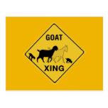 Goat Crossing, Traffic Warning Sign, Indiana, USA Postcard
