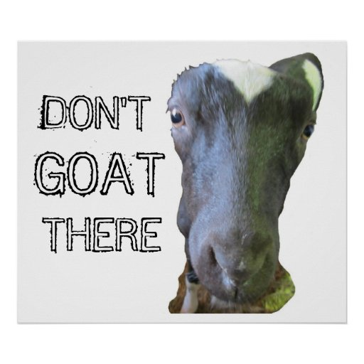 "Goat ""DON'T GOAT THERE"" Print"