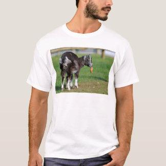 Goat eating carrot T-Shirt