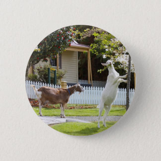 Goat Eating From Tree Button