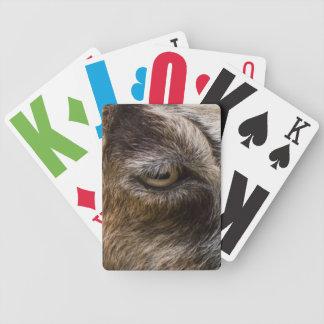 Goat eye playing cards