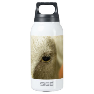 Goat Face Insulated Water Bottle