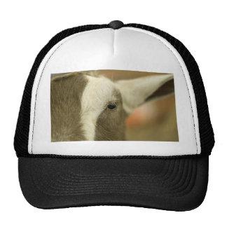 Goat Face Trucker Hat