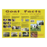 Goat Facts Poster 1