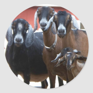 Goat Family Stickers