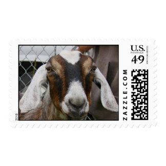 Goat goes postal postage