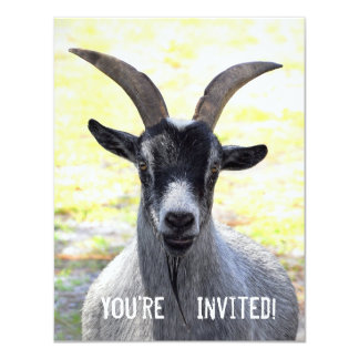 Goat Head Invitations