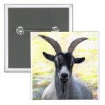 Goat Head Pins