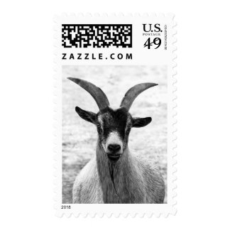 Goat Head Postage Stamp