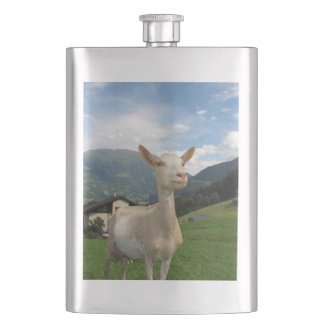 goat hip flask