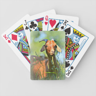 Goat in Pasture Card Deck