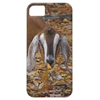 goat iPhone SE/5/5s case