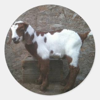 Goat kid sticker