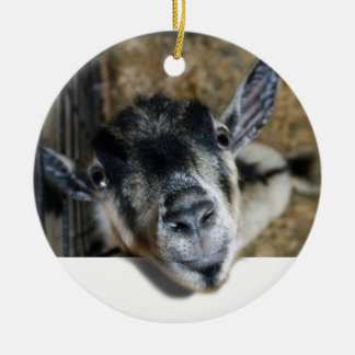 Goat Looking Out Ceramic Ornament