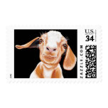 Goat Love Postage Stamps