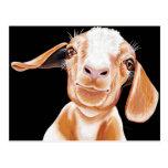 Goat Love Postcard