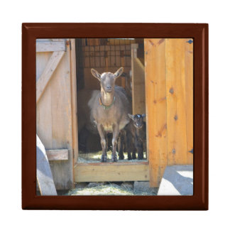 Goat Lover Jewelry Box