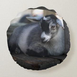 Goat Round Pillow