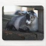 Goat Mousepad