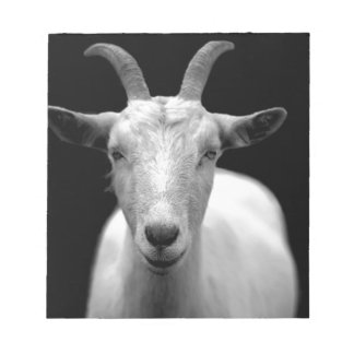 Goat Notepads