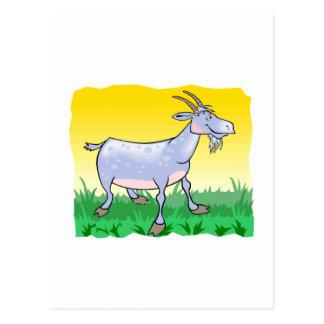 Goat On Grass Postcard