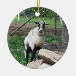 Goat Ornament