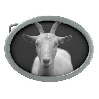 Goat Oval Belt Buckle
