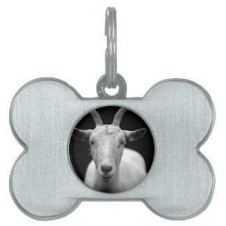 Goat Pet ID Tag