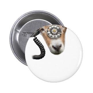 Goat Phone Call Head Pinback Button