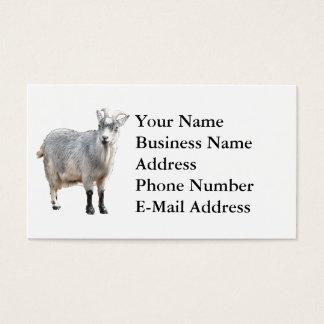 Goat Photograph Design Business Card