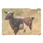 Goat Picture iPad Mini Case
