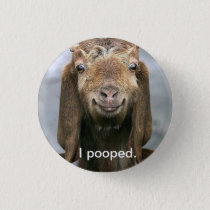 Goat pooping. pinback button