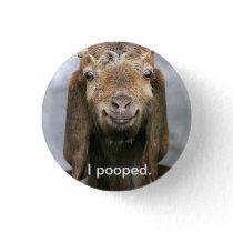 Goat pooping. pinback button