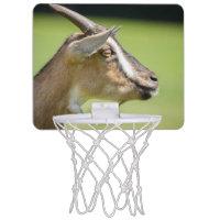 Goat Portrait On A Blurred Green Background Mini Basketball Hoops