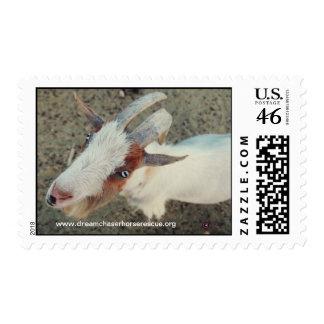 Goat Postage