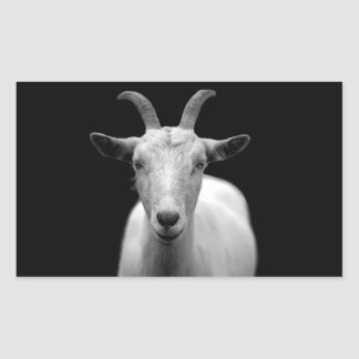 Goat Rectangular Sticker