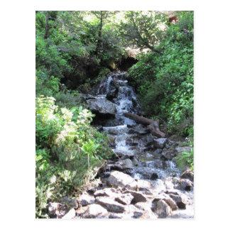 Goat Rocks Creek Post Card
