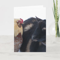 GOAT &ROOSTER FRIENDS IN SNOW CARD