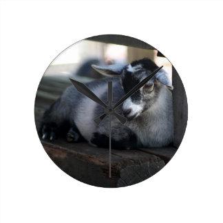 Goat Round Clock