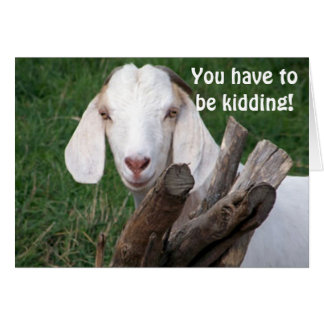 GOAT SAYS-GOT TO BE KIDDING 40th Card