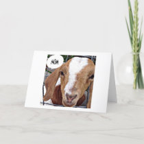 "GOAT SAYS ""MOM"" ""NOT KIDDING HAPPY BIRTHDAY"" CARD"