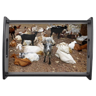 Goat, Serving Tray