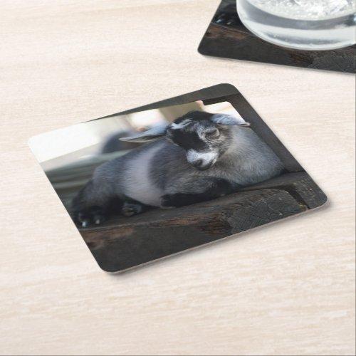 Goat Square Paper Coaster