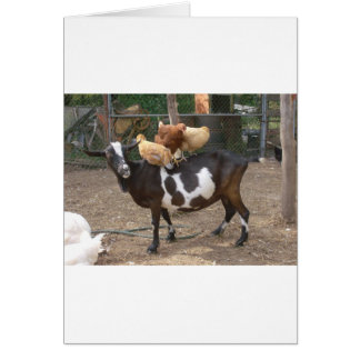 Goat taxi greeting card