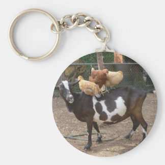 Goat taxi basic round button keychain