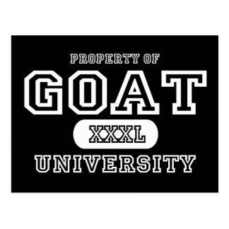 Goat Univeristy Dark Postcard